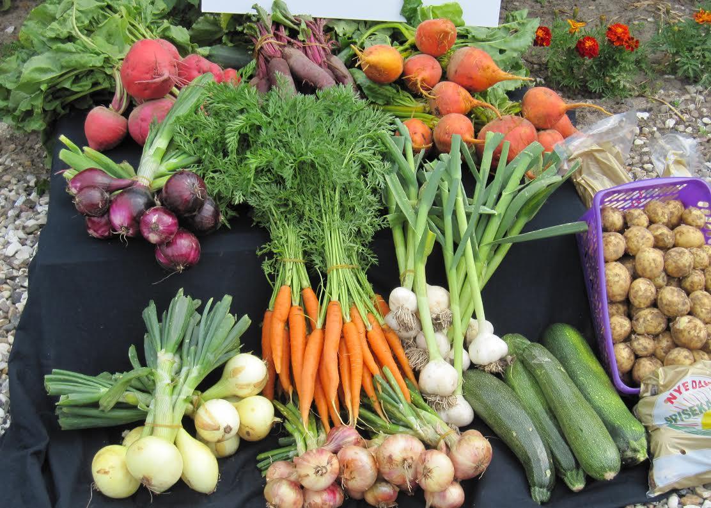 Løg, rødbeder, gulerødder, squash og krydderurter